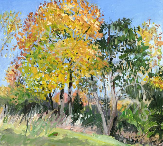 Nancy Beal, <em>Autumn Tree</em> <br/>Edition of 500